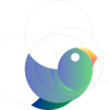 the golden ratio - bird